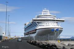 Crown Princess (Sig Holm) Tags: june island iceland islandia ísland islande icelandic islanda 2011 juní ijsland islanti 冰島 איסלנד исландия アイスランド íslenskt ισλανδία أيسلندا 冰島的圖片 冰島圖片 冰島。 アイスランド語 アイスランド写真 crownprincessreykjavík