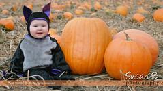 Pumpkin-lishess
