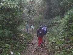 Monteverde - 32