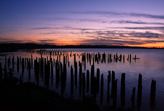 Pilings after sunset