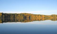 Tyyni (Sami Niemeläinen (instagram: santtujns)) Tags: lake suomi finland scenery calm maisema autumm syksy järvi polvijärvi kontiolahti tyyni