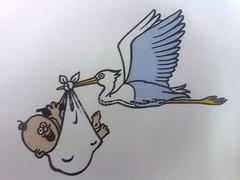 whatley stork