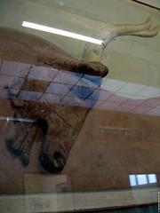 GR06 2834 Heraklion Archaeological Museum, Crete (Templar1307) Tags: travel island ancient mediterranean 2006 greece grecia crete griechenland grèce artifacts heraklion knossos minoan candia iraklion ギリシャ 希臘 κρήτη ελλάδα grækenland יוון ηράκλειο греция يونان ܝܘܢ یونان ग्रीस גריכנלאנד κνωσόσ греций