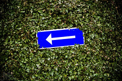 (koinis) Tags: blue white green sign john 50mm hedge getty arrow 18 skylt pil bl grn hck koinberg koinis