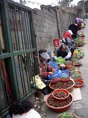 women selling on market hill (www.elliebrown.com) Tags: old people frutas vegetables fruit architecture temple asia market herbs stones buddhist prayer bodylanguage mercado busan ginseng buddah vegetales skorea elliebrown bomosa
