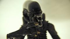 Anglų lietuvių žodynas. Žodis alien reiškia 1. a 1) svetimas; 2) kitoks; tolimas (from); 2. n svetimšalis lietuviškai.