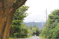 IMG_0839 (Psalm 19:1 Photography) Tags: hawaii oahu diamond head polynesian cultural center waikiki haleiwa laie waimea valley falls