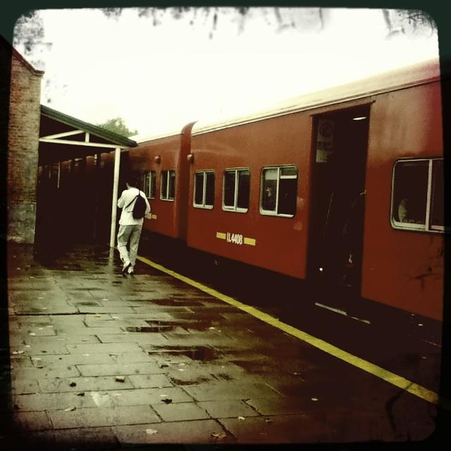 Lluvia Y Tren
