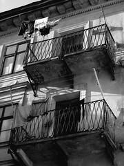 Linge au soleil (Weingarten) Tags: lviv lopol lemberg leopoli galiziaeuropacentrale galizien galicie ukraine ucraina lvivo leopolis lww    liov vov lvov ucrana ukrajina  ukrainio ucrania krana ukrain ukraina ucrnia    galtsia hali galiciacentraleurope galiciaeuropacentral galicio galitsia gcsorszg galicioosteuropa galicja  galiia galiyaortaavrupa  ukrayna