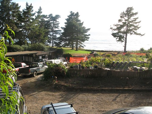 The view from our room at Esalen