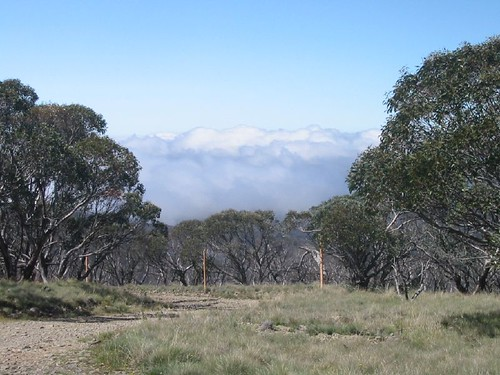 """East view from Mt Ginini, low clouds building • <a style=""""font-size:0.8em;"""" href=""""http://www.flickr.com/photos/10945956@N02/2080529002/"""" target=""""_blank"""">View on Flickr</a>"""