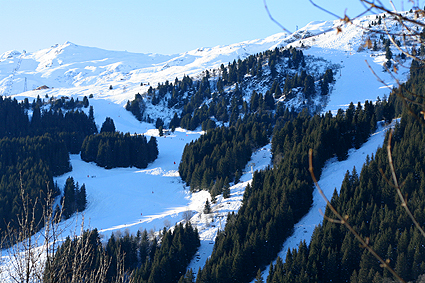 mountainslopes-.jpg