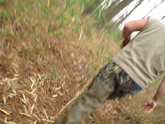 Checking hunting sites in Springfield, Louisiana, USA