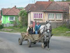 Romania (relisa) Tags: street houses people horse strada transport poor eu case persone journey romania carro cavallo viaggio chariot povert mezzoditrasporto