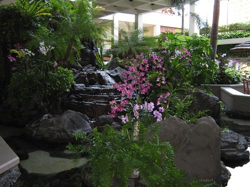 Hawaii by Yuu