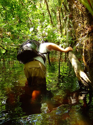 fishing little slough garden 4-27-08 038