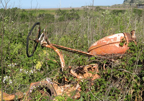 Tractor remains