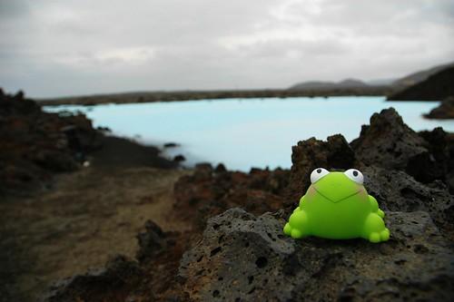 J1: FrogZ @Blue Lagoon