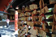 Kyoto 2008 - 清水寺(10)