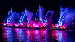 Animal Kingdom - Row of Lotus (Jeff Krause Photography) Tags: ap animal colored disney floating floats fountain jets kingdom lake light park preview projections rivers show wdw water theme kissimmee florida unitedstates us
