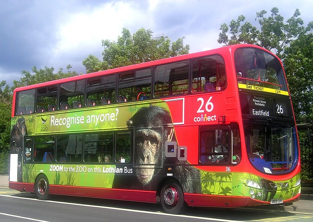 Zoom to the Zoo on 316 by Stuart Montgomerys Lothian Buses