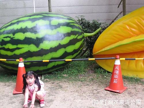 苗栗樂活桐花公園185