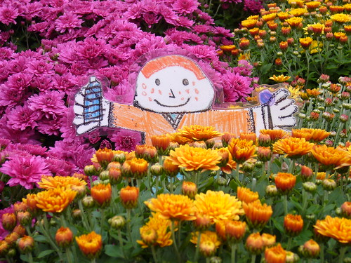 Flat Stanley In the Flowers