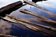 Sky logs