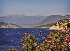 Greek beauty (bekahpaige) Tags: ocean flowers hot beautiful landscape greek countryside europe delphi greece naturesfinest 10faves mywinners aplusphoto goldenphotographer platinumheartaward