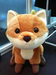 Giant foxkeh