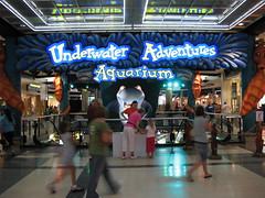 Underwater Adventure Aquarium (jpellgen) Tags: sea minnesota canon mall shopping aquarium minneapolis powershot mallofamerica sharks moa twincities bloomington stores nordstroms mn 2007 sharky underwateradventure