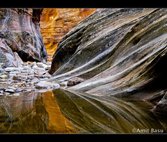 Reflections of Zion. A reflecting pool in Echo Canyon, Zion National Park, Utah. (Amit Basu) Tags: park street bridge windows sunset red sky favorite cliff snow reflection tree monument rock wall river garden landscape island gold golden three utah newspaper waterfall apache colorado arch natural d indian echo arches canyon virgin capitol national sprinkler canyonlands backcountry moab bryce zion needles delicate reef folds narrows evils amit escalante gnarled apostles basu echocanyon kolob doubleo mckennas naturescall waterpocket playgroun gettysubmit betterthangood mailciler treeofhonor llovemypic amitbasu amitoda gettysep2009