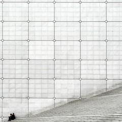 La Grande Arche - n. 1 (Isco72) Tags: white paris france muro wall architecture bravo stairway panasonic fabulous francia bianco soe architettura ladfense dfense parigi grandearche geometria scalinata linee takeabow themoulinrouge spreckelsen scalini blueribbonwinner firstquality rombi supershot johanottovons