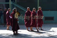 30099717 (wolfgangkaehler) Tags: 2017 asia asian southeastasia myanmar burma burmese mandalay mahagandayonmonastery mahagandayonmonastary people person monks buddhist buddhistmonasteries buddhistmonastery buddhistmonk buddhistmonks