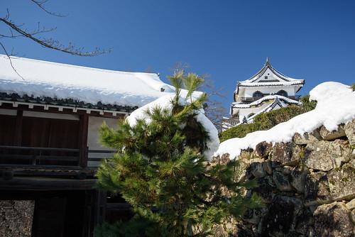 彦根城12・Hikone Castle