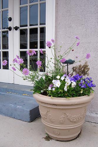 Pot O' Flowers