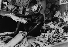 WTF? (Sea Moon) Tags: fish black dead snorkel mask box 54 920 neoprene unspecified whiteformat 131496 landscapemaleanimal marketfishfoodbizarrem