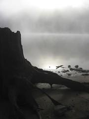Falls Lake 10.21.07 (insatiable73) Tags: