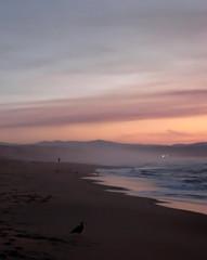 Marina Beach Sunset