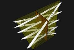 Side Trefoil Tetra Torus