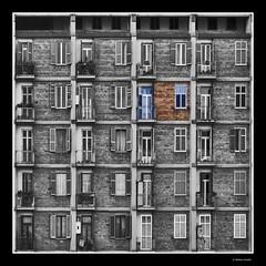 La vita, istruzioni per l'uso (Stefano Pizzetti) Tags: life windows urban italy rome roma building lines bravo italia pattern bricks symmetry best squareformat chapeau flickrcentral palazzo nikondigital simmetria quadrato citt monotony alienation finestre aesthetic themoulinrouge bestshots urbangeometry patternsanddesigns artisticexpression linescurves geometricbeauty blackandwhiteandcolor perec flickrtoday supershot spartaco photoshopsupportgroup narrazioneeimmagini desaturadoselectivo gfb mywinners socialdocumentaryphotographers brigaterozze anawesomeshot thepritzkerarchitectureprize quadraro globalvillage2 lunarvillage photoshopisnotadirtyword envyofflickr imagoromae flickrelite geometriegeometry exploreunexplored romainbiancoenero yourvisions betterthangood blackandwhiteartawards italianflickrworld officinefotografiche nikonclubitalia stunningphotos desafiourbano soloconcorsi photocomputerart romedirectory altraroma highcreativity narcisismoalcubo percorsiurbaniof stefanopizzetti vidaenblancoynegro