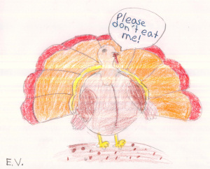 Save the Turkeys by E.V.