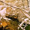 "The Joyous Light!!!…My Wild River… !!! (Denis Collette...!!!) Tags: winter light snow canada bravo flickr quebec lumière hiver rivière bach cello neige premier anniversaire joyous prelude sauvage joyeuse firstquality magicdonkey imagepoetry abigfave ""deniscollette"" «wildriver» world100f «yoyoma» «cellosuiteno1» «firstanniversary» explorewinnersoftheworld"