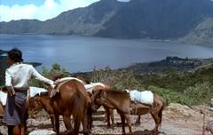 Lake Batur Bali Nov 1975 (Blue-yonder) Tags: bali lakebatur volcanoe mtbatur mountbatur
