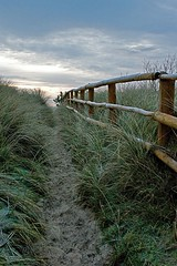 Pathway to the sky (Alan Rossiter) Tags: beach fence landscape frost path 2008 curracloe ravenpoint sonya700