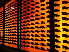 dire wolf skulls