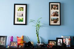 Shelf Space (funkaoshi) Tags: digitalrebelxt persiannewyear canon28mmf18usm narooz