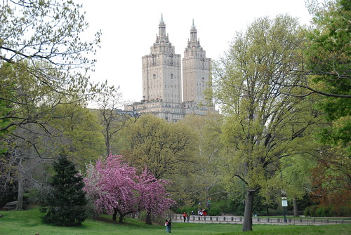 central park spring pictures. Central Park Photo Taken In