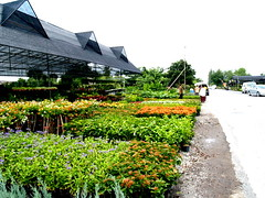 plants center thailand02