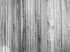 T4L boards texture 1024 ( David Gunter) Tags: wood bw white black texture nature boards hole nail knot nails layer knothole jacksontn t4l jacksontennessee textureforlayer davidgunter